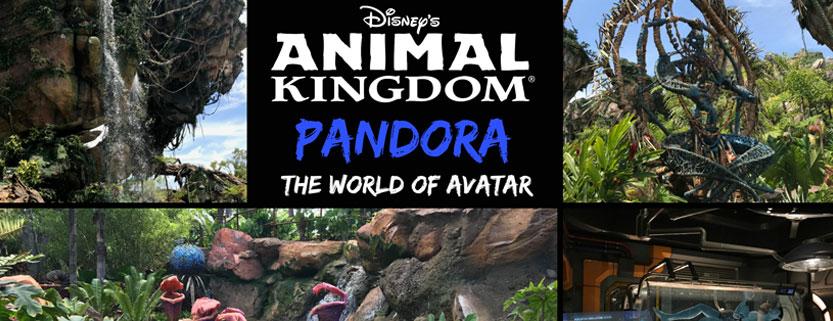 Mundo Avatar, melhores lugares do mundo